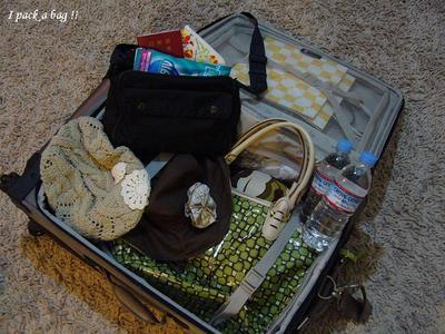 I_pack_a_bag