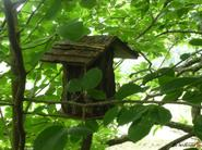 The_birdhouse