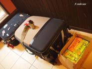 A_suitcase_4