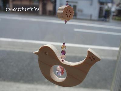 Suncatcherbird