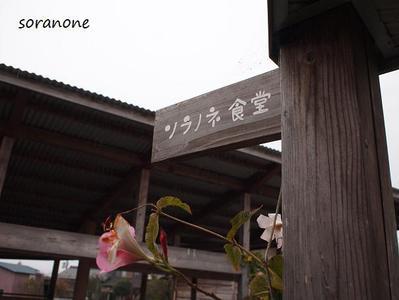Soranone2
